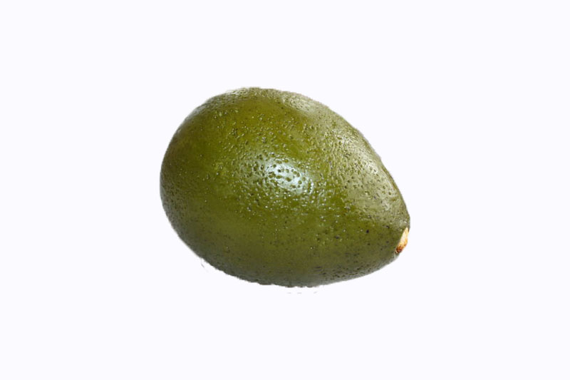 Faux Realistic Avocados Pack of 3