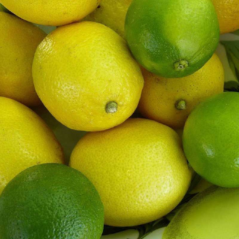 Artificial Natural Limes and Lemons Pack of 20